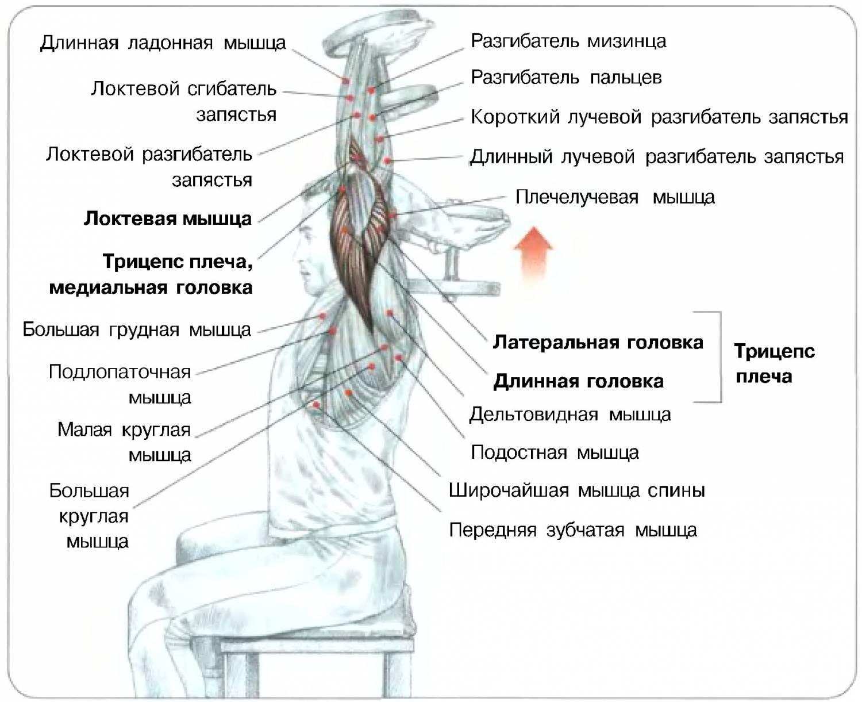 Шейный остеохондроз мазь кетонал